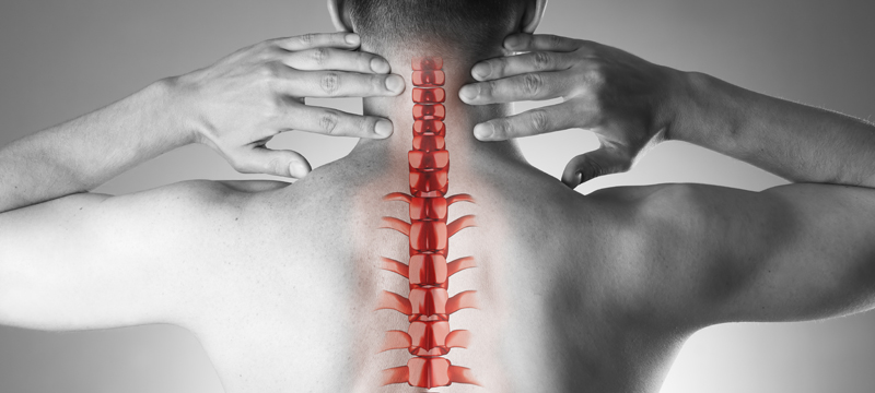 chiropractor edmonton south - back adjustment
